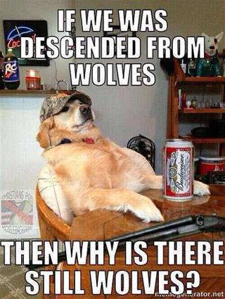 then-why-are-there-still-wolves-meme-320-px-tiny-Dec-2015-Tetrapod-Zoology